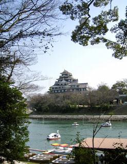 岡山城とスワンボートの写真・画像素材[2211966]