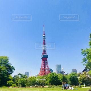 東京タワーを背景に青空の写真・画像素材[2427560]
