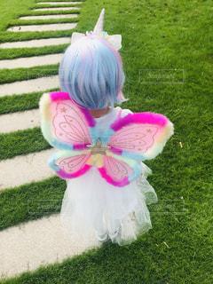 羽をつけた女の子の写真・画像素材[2676893]
