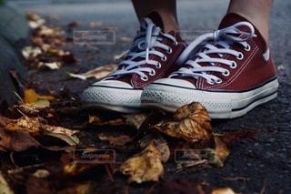 赤い白と青の靴の写真・画像素材[2511412]