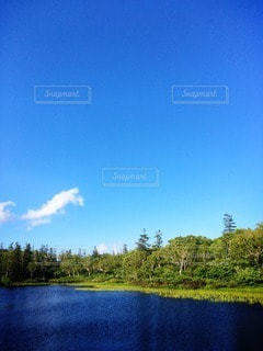 自然の写真・画像素材[84266]