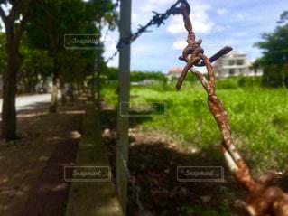 役目を終えた有刺鉄線の写真・画像素材[2203695]
