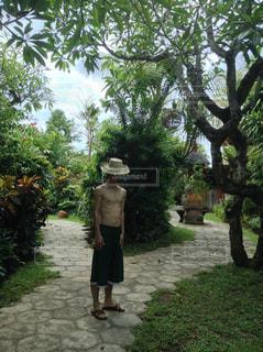 木の隣に立っている男の像の写真・画像素材[2219436]