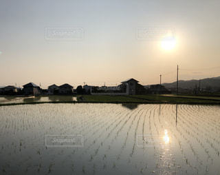田んぼに映える夕日の写真・画像素材[2190150]