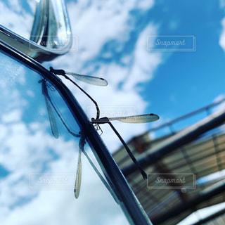 サイドビューミラーのクローズアップの写真・画像素材[2198355]