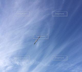 空への写真・画像素材[2243466]