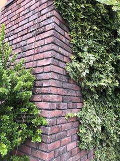 茂みと木々のある大きなレンガ造りの建物の写真・画像素材[2188317]