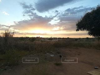 草原に沈む夕日の写真・画像素材[2186590]