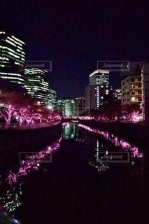 目黒川イルミネーションの写真・画像素材[2727999]
