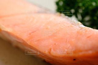 鮭の塩焼きの写真・画像素材[2509808]