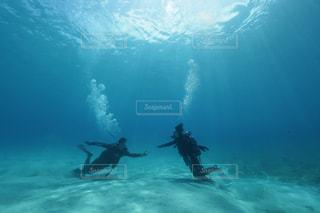 水の中で泳いでいる男女の写真・画像素材[2861260]