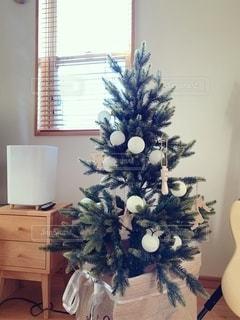 クリスマスツリーの写真・画像素材[2737043]