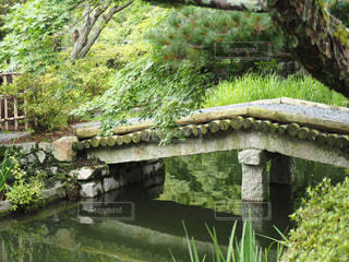 川に架かる石橋の写真・画像素材[2264403]