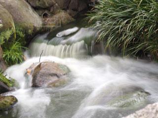 小川の写真・画像素材[2264745]