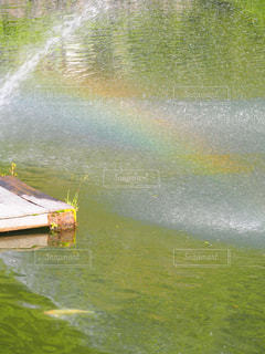 池の写真・画像素材[2264777]
