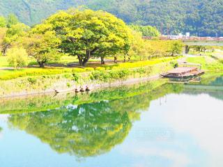 木々に囲まれた水域の写真・画像素材[2269490]