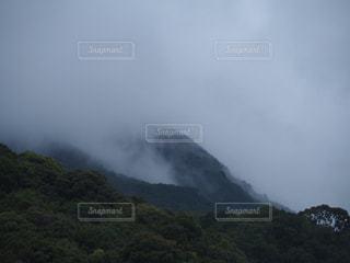 霧濃い山の写真・画像素材[2391612]