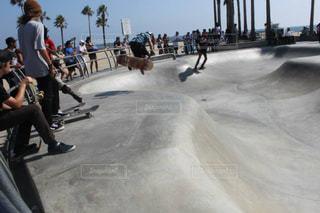 スケートボードの写真・画像素材[140524]