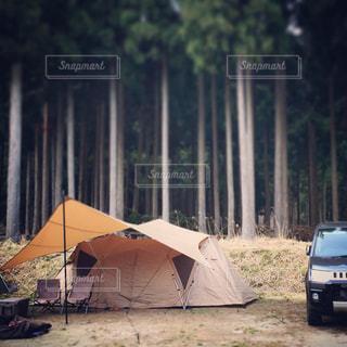 キャンプの写真・画像素材[2195824]