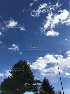 青空の写真・画像素材[2208791]