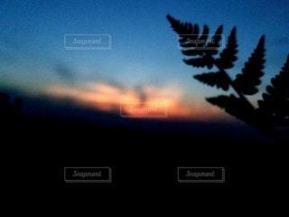 夏の夕暮れをバックにの写真・画像素材[2196418]