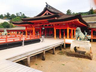 厳島神社本殿の写真・画像素材[2197639]