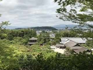 銀閣寺の写真・画像素材[2197597]