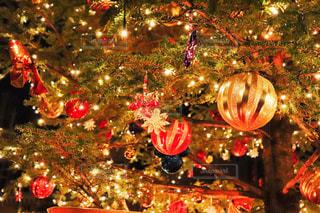 クリスマスツリーの写真・画像素材[2597623]
