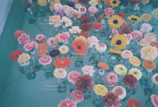 水面に浮かぶ花たちの写真・画像素材[2201923]