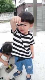 くわがたを捕まえた男の子の写真・画像素材[2207784]
