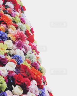 花のクリスマスツリーの写真・画像素材[930865]