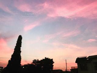 ピンクが綺麗な夕焼けの写真・画像素材[1311228]