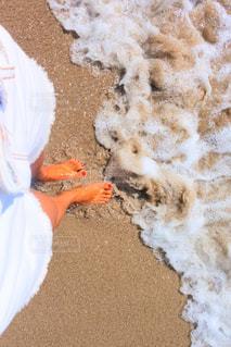 砂浜の写真・画像素材[2203510]