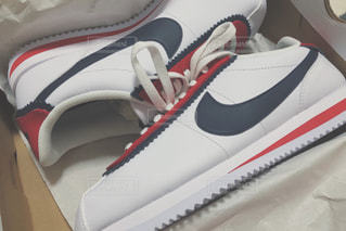 Nikeのスニーカーの写真・画像素材[2203354]