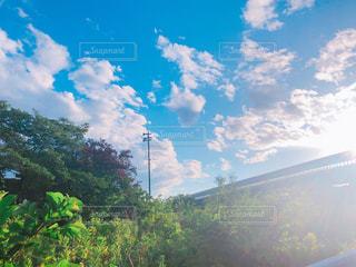 雨上がりの綺麗な青空の写真・画像素材[2224145]