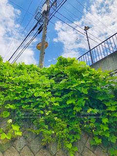 街の通りの眺めの写真・画像素材[2205706]