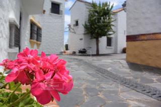地中海の町並みの写真・画像素材[2505948]