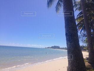 水の体の前にヤシの木がある浜辺の写真・画像素材[2205270]