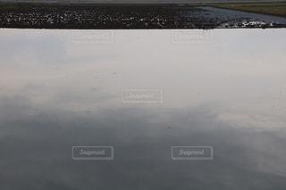 水田の写真・画像素材[2209323]