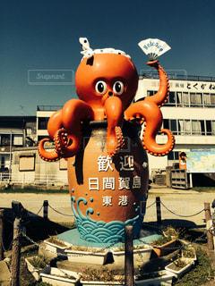 日間賀島の蛸の写真・画像素材[2217657]