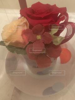 花の写真・画像素材[2222232]