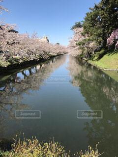 水の池の写真・画像素材[2210154]