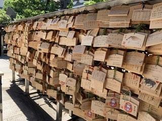 湯島天満宮の絵馬の写真・画像素材[2220501]
