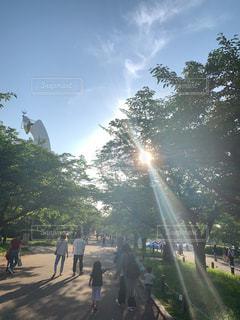 木の隣の通りを歩く人々のグループの写真・画像素材[2211632]