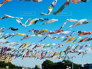 空を飛ぶ人々のグループの写真・画像素材[2216010]