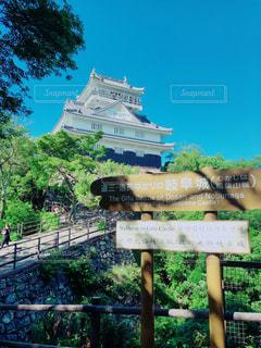 晴天の日に登った、岐阜城まであと少しの写真・画像素材[2214714]