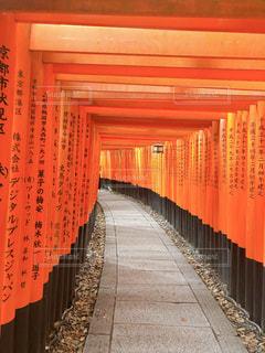 伏見稲荷大社を背景にした赤いカーテンのクローズアップの写真・画像素材[2218287]