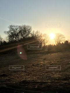 野原の夕焼けの写真・画像素材[2224575]