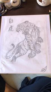 白虎の写真・画像素材[3166010]