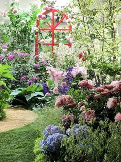 綺麗な庭園の写真・画像素材[2307417]